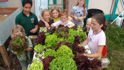 growing organically with aquaponics
