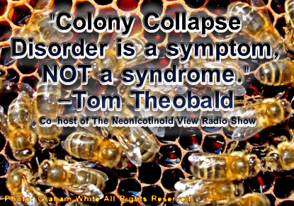 Tom Theobald Colony Collapse Disorder is a symptom, not a syndrome