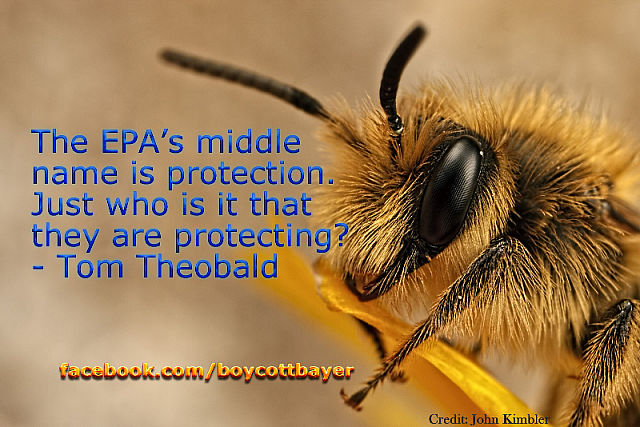 """The EPA's middle name is protection. Just who is it that they are protecting?"" - Tom Theobald"