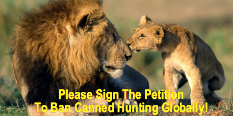 Please click this image to sign the petition!