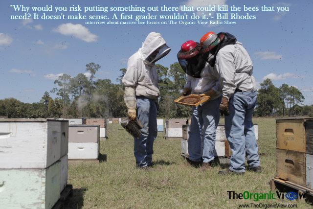 "Why would you risk putting something out there that could kill the bees that you need? It doesn't make sense. A first grader wouldn't do it.""- Bill Rhodes"