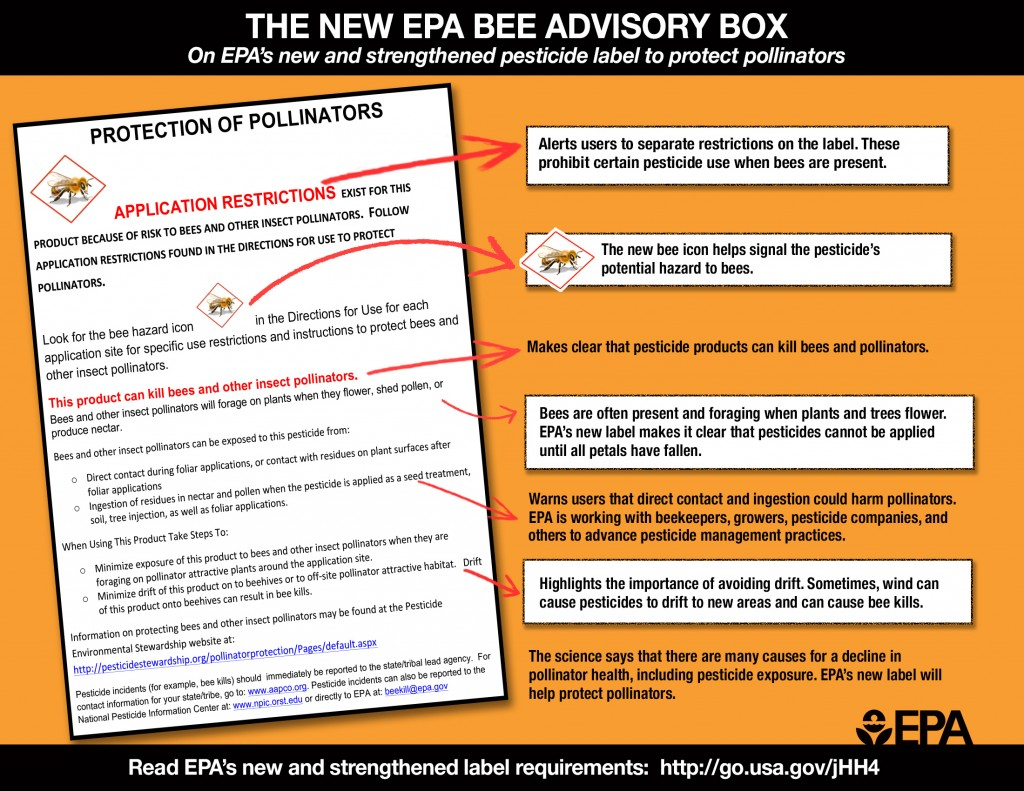 bee-label-info-graphic