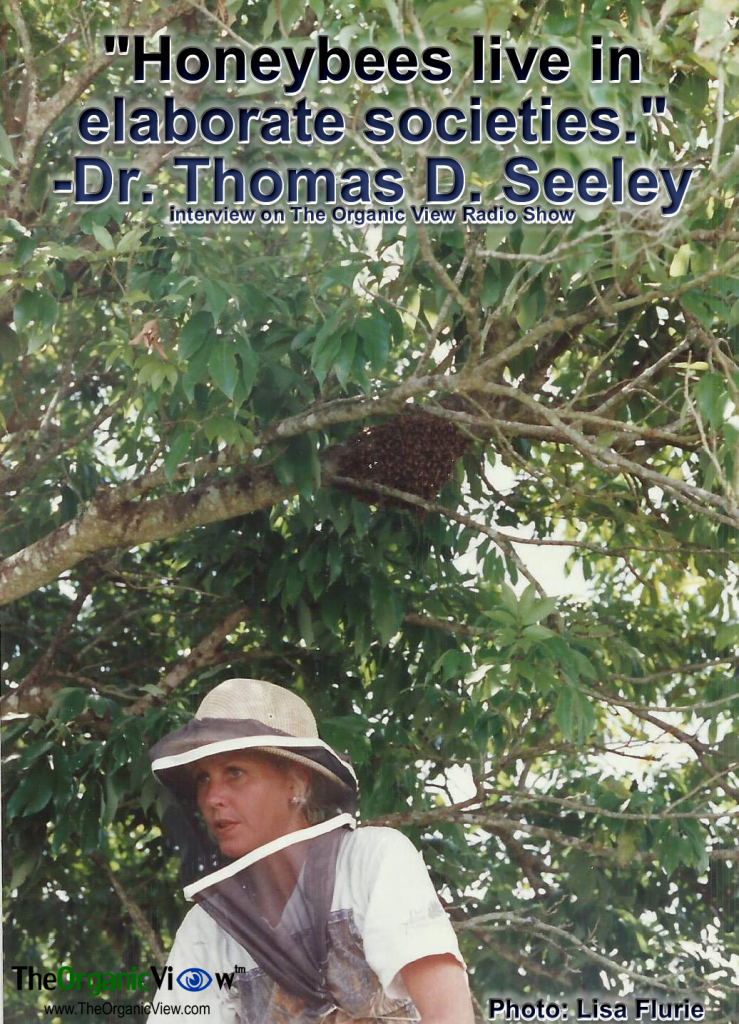 Honeybees live in elaborate societies. -Dr. Thomas D. Seeley