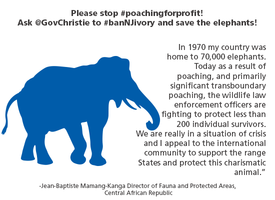Please stop poaching for profit. Ask Gov Christie to ban NJ ivory & save elephants.