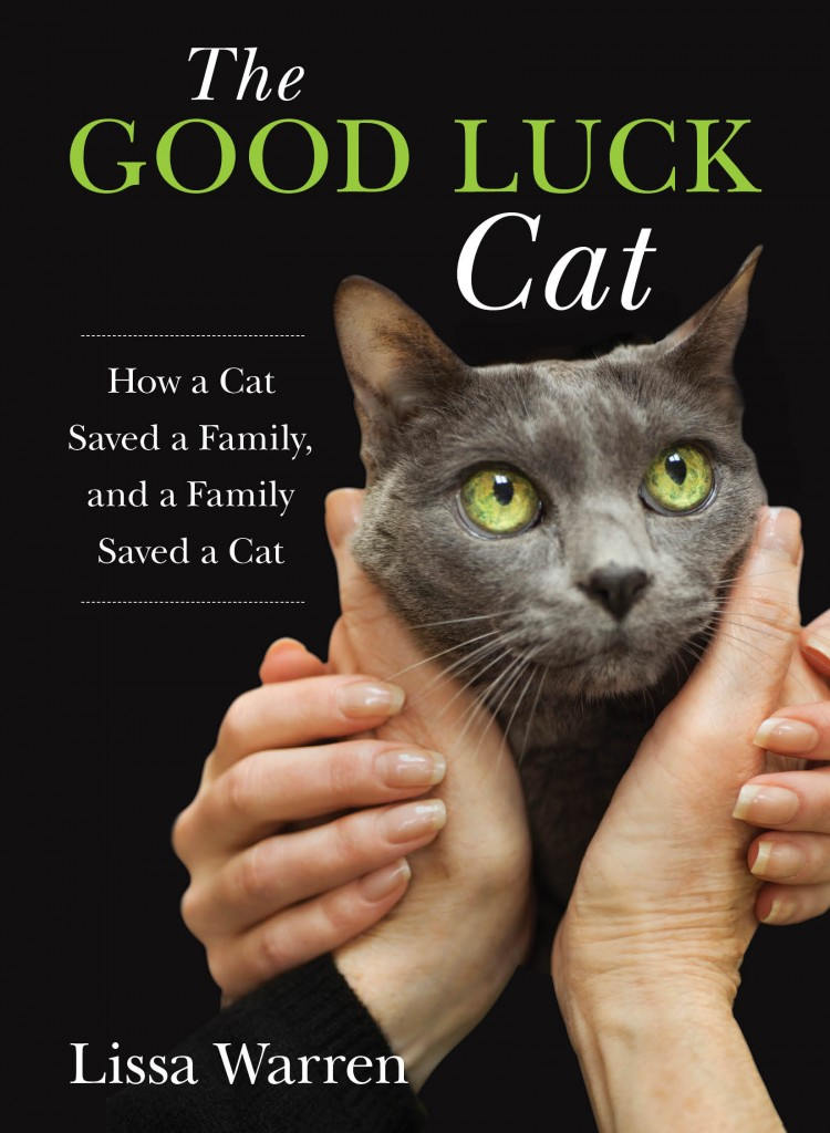 Want to get your own copy of The Good Luck Cat? Click the image!