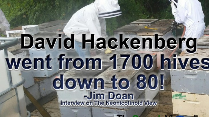 David Hackenberg went from 1700 hives down to 80- Jim Doan