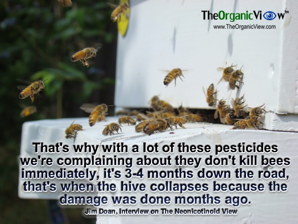 That's why with a lot of these pesticides we're complaining about they don't kill bees immediately