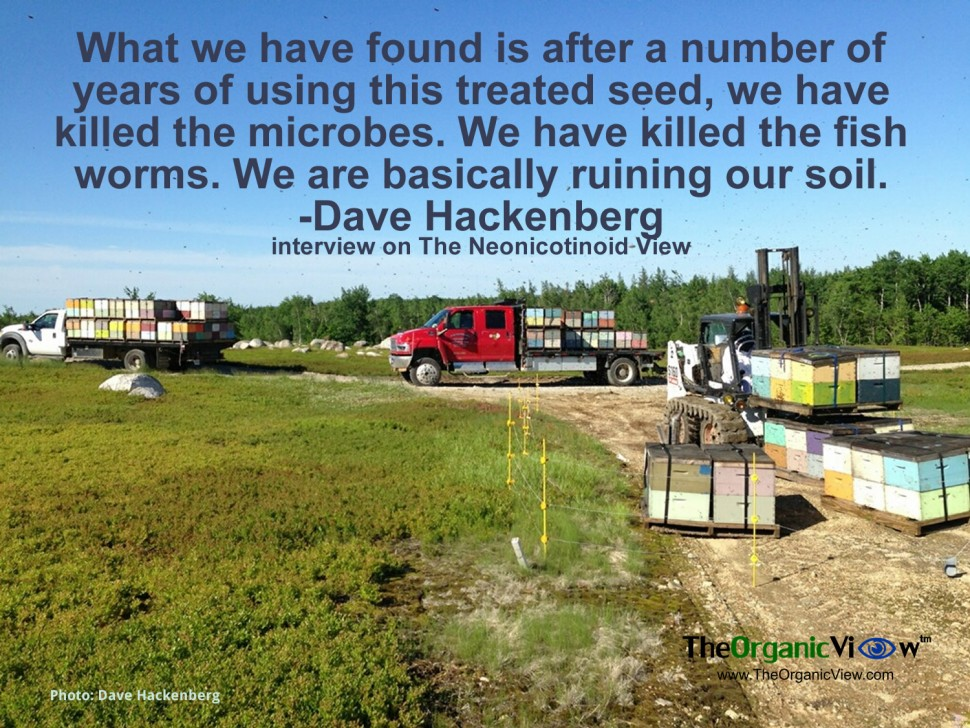 What we have found is after a number of years of using this treated seed, we have killed the microbes. We have killed the fish worms. We are basically ruining our soil. -Dave Hackenberg interview on The Neonicotinoid View