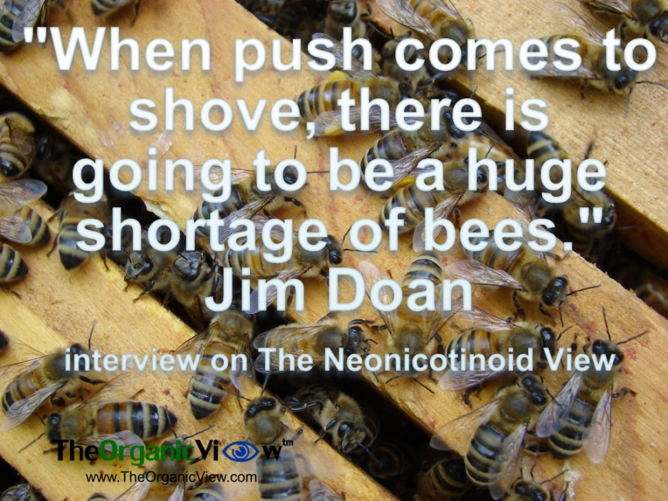 When push comes to shove, there is going to be a huge shortage of bees
